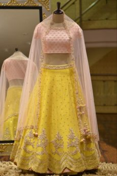 Bollywood lehenga choli designer